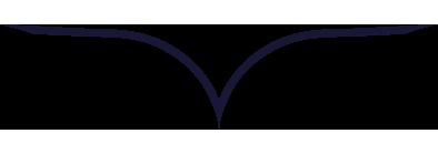 gdzn_logo